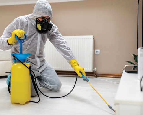 affordable disinfection companies